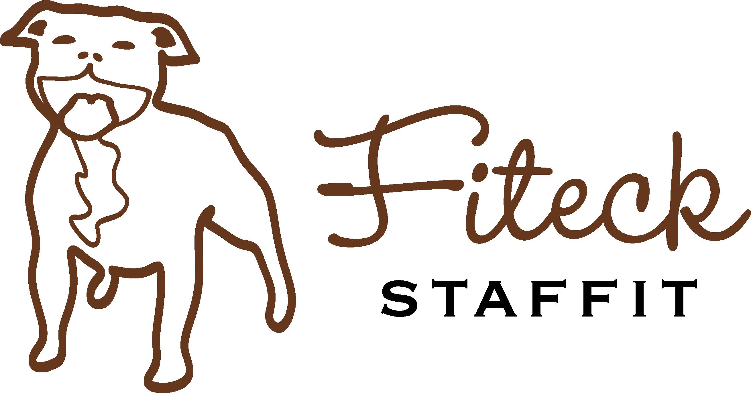 Fiteck